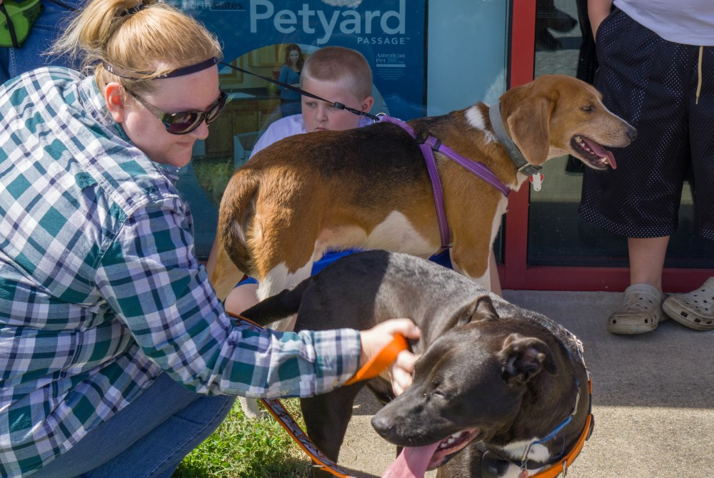 PetSence Adoption Event – Toby and Blackie find Homes